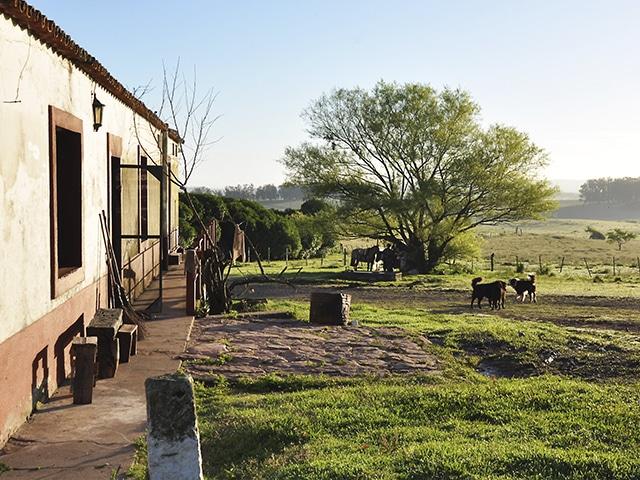 No departamento de Cerro Largo, as estâncias: Uruguai na sua essência (Foto: Zizo Asnis)
