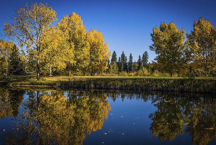 Bower Ponds em Red Deer   Foto por Paul Howard