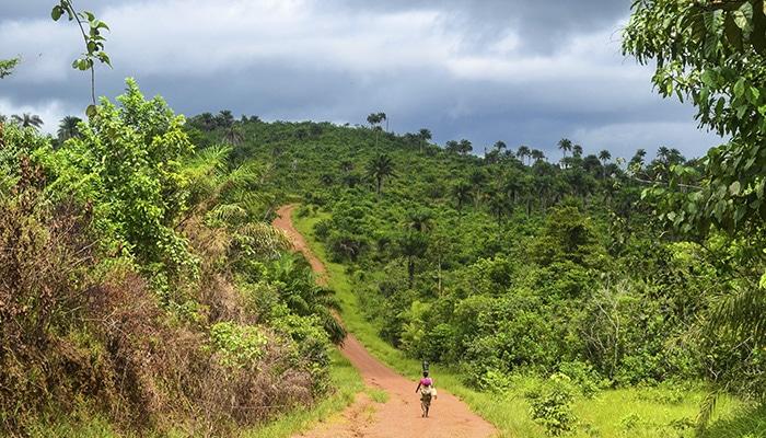 Estrada no sul da Serra Leoa (Foto por jbdodane).