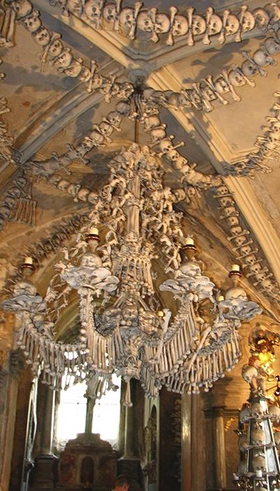 Lustre feito de ossos | Foto por fdecomite