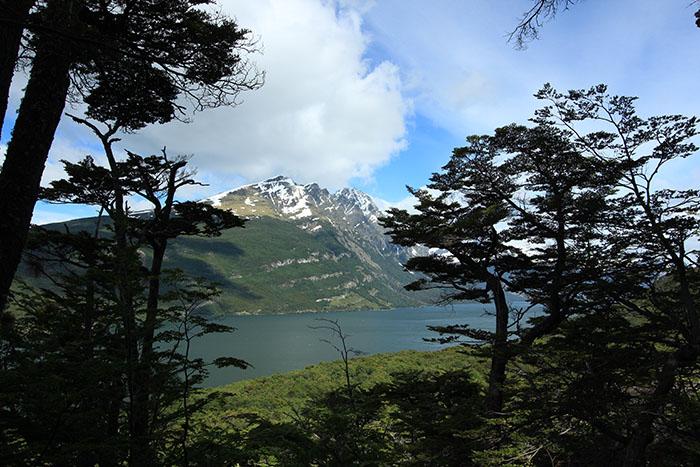 Parque Nacional Tierra del Fuego | Foto por Bruna Cazzoli