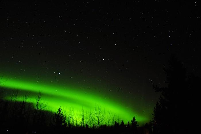 As belas luzes verdes da Aurora Boreal   Foto por Livia Auler