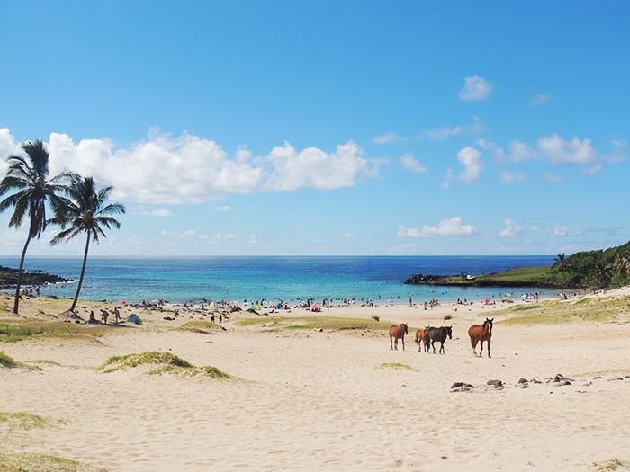 Praia Anakena | Foto por Sabrina Levensteinas