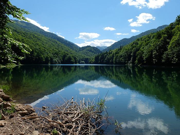 Parque Biogradska Gora, na região de Berane (Montenegro), próximo à divisa com Kosovo (Peja) | Foto de Fabian Julius