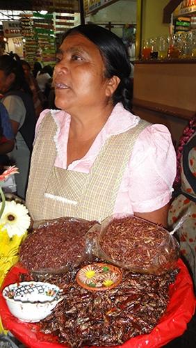 Chapulinos (grilos fritos) em Oaxaca, México | Foto enviada por Lara Taís Casagrande