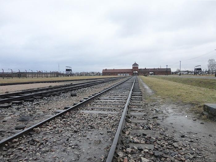 A entrada do Complexo Auschwitz – Birkenau e os trilhos de trem   Foto por Carolina Caio