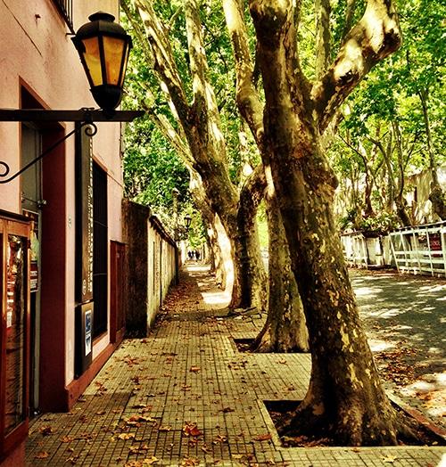 As charmosas ruas de Colonia agradam todos os viajantes   Foto por João Paulo de Vasconcelos