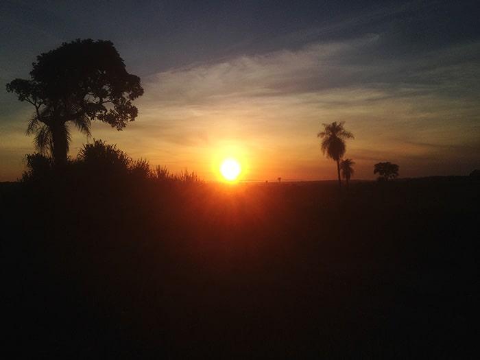 Nascer do Sol no Pantanal | Foto por Renata Ferri