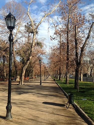 Parque Forestal, no centro da cidade | Foto por Felipe Parma