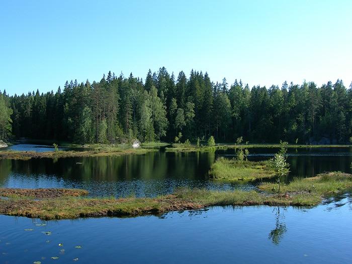 Parque Nacional Nuuksio, em Espoo | Foto por Claudio Saavedra (CC BY-NC-SA 2.0)