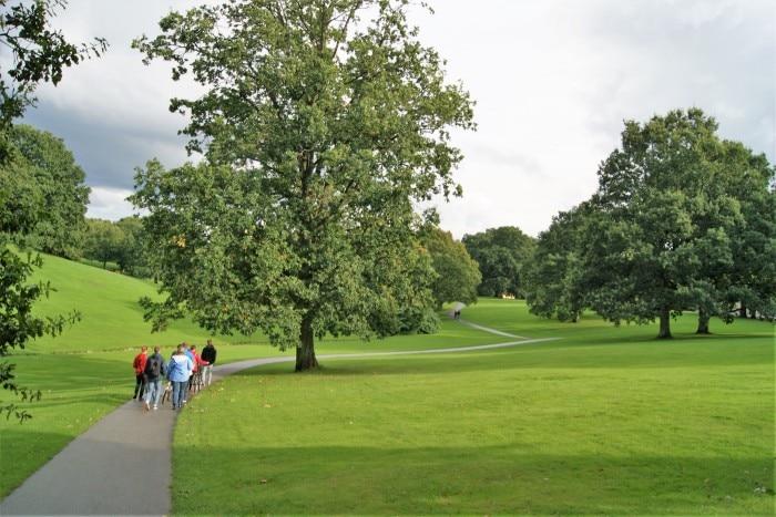 Uniparken: belo lugar para caminhadas e fazer piqueniques | Foto por Vinícius Fontana