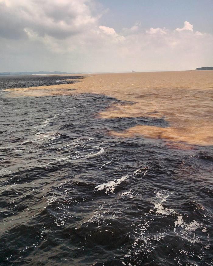 Encontro das águas, entre o Rio negro e o Rio | Por Carolina Pera