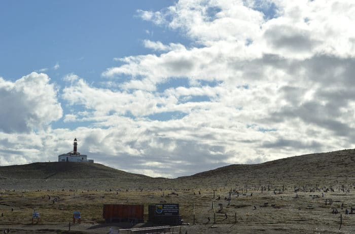 Isla Magdalena vista do barco | Beto Lisboa