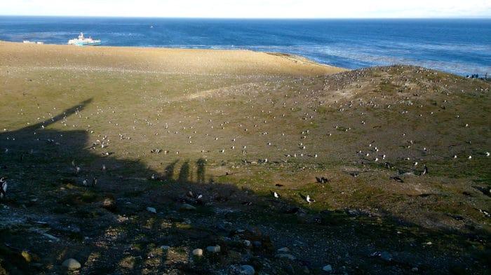 Isla Magdalena vista do farol | Beto Lisboa